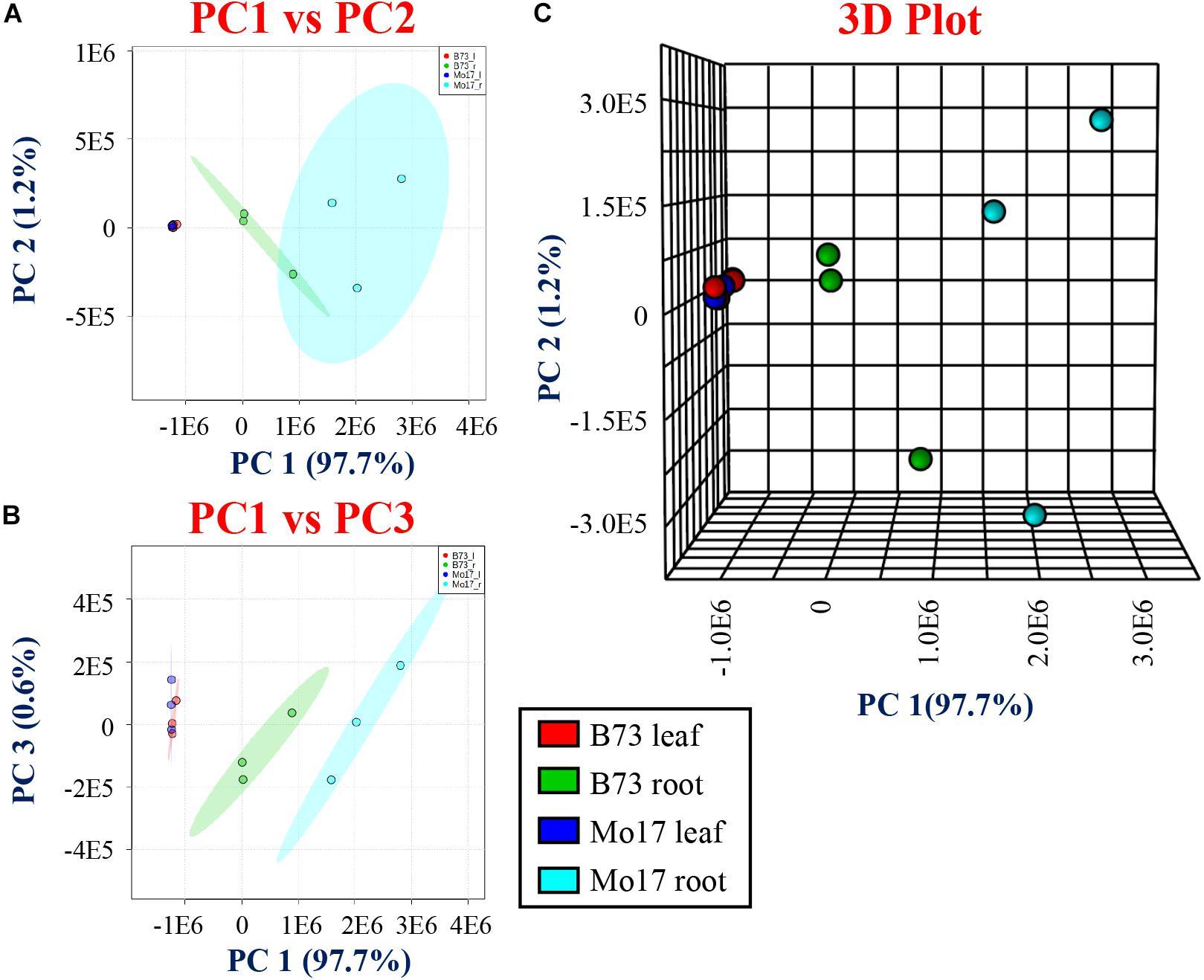 Frontiers | Toward Mass Spectrometry Imaging in the Metabolomics