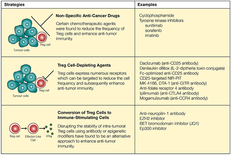 Frontiers | Turning the Tide Against Regulatory T Cells
