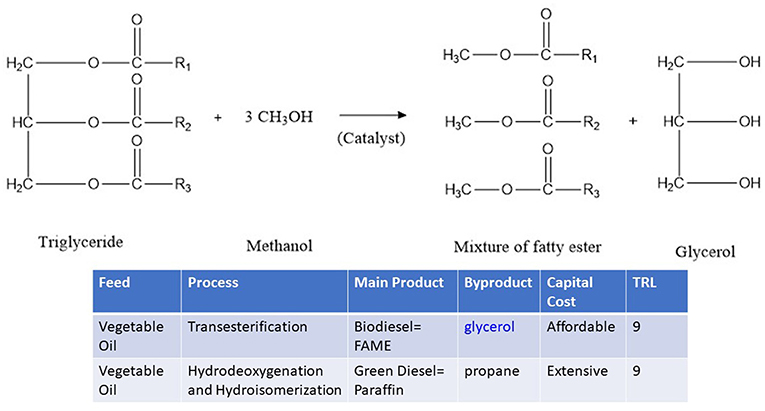 Frontiers | Peculiarities of Glycerol Conversion to Chemicals Over