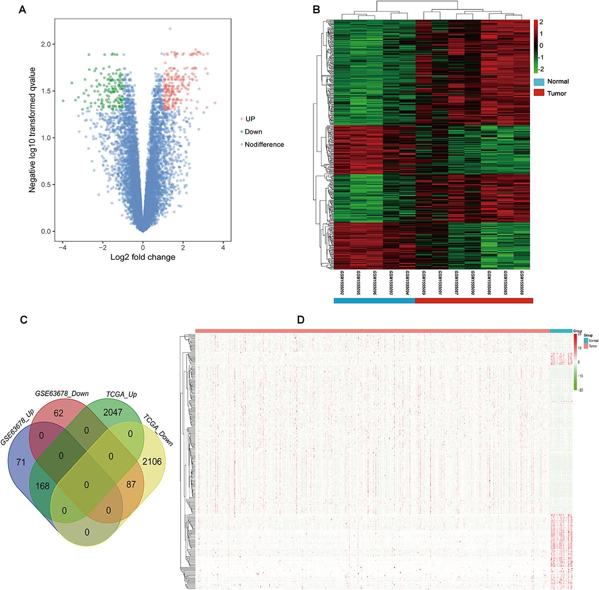 Frontiers | Identification of Potential Crucial Genes