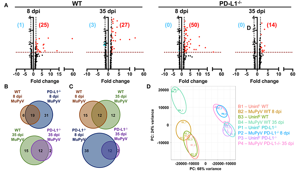 Frontiers | PD-1 Dynamically Regulates Inflammation and