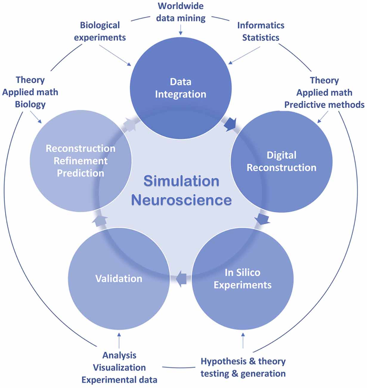 Frontiers | A Brief History of Simulation Neuroscience
