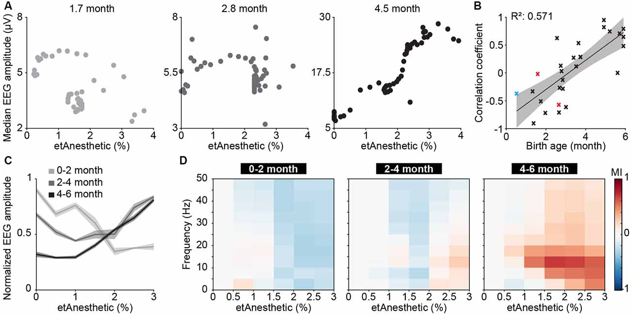Frontiers | Neural Correlates of Anesthesia in Newborn Mice and