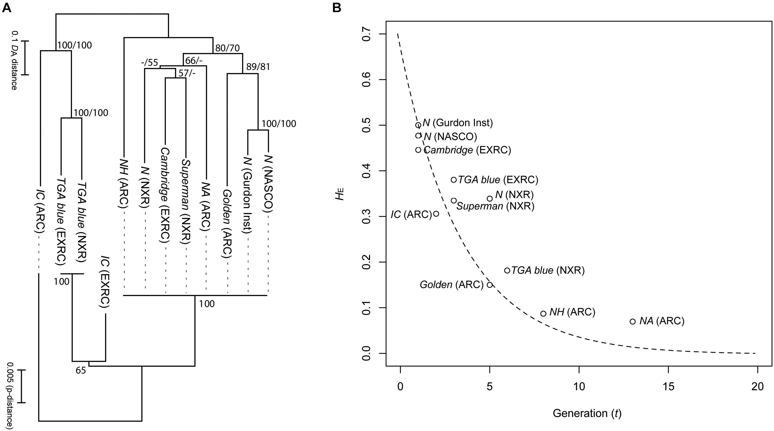 Frontiers | Xenopus Resources: Transgenic, Inbred and Mutant Animals