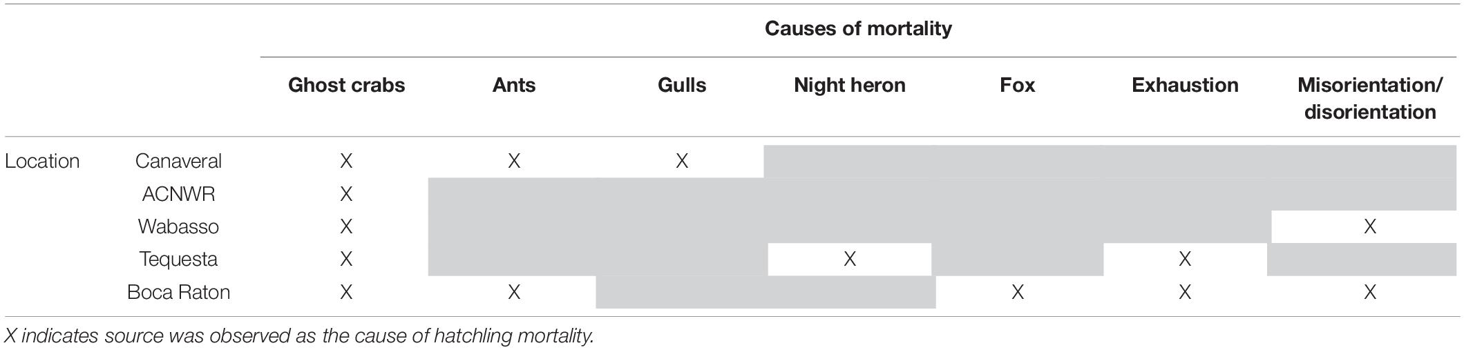 Frontiers | Nest-to-Surf Mortality of Loggerhead Sea Turtle