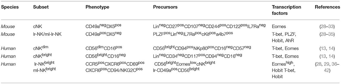 Frontiers   Hepatic Natural Killer Cells: Organ-Specific