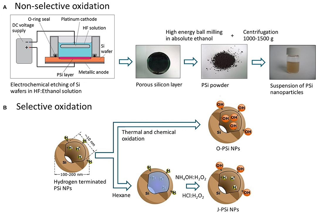 Frontiers | Cavitation Induced by Janus-Like Mesoporous Silicon