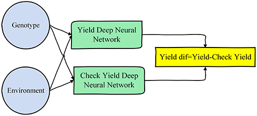 Frontiers | Crop Yield Prediction Using Deep Neural Networks