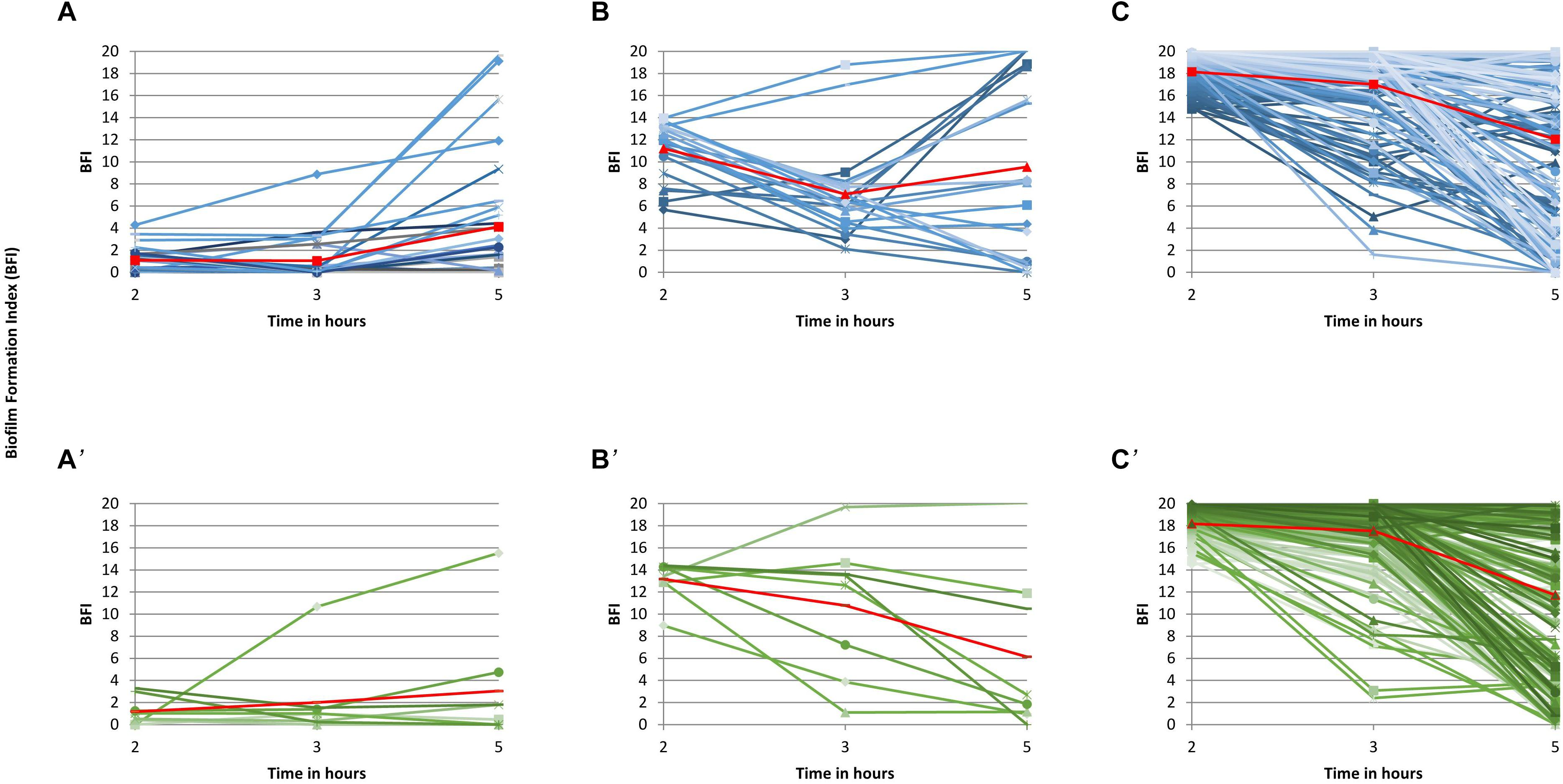 Frontiers | Association Between Kinetics of Early Biofilm Formation