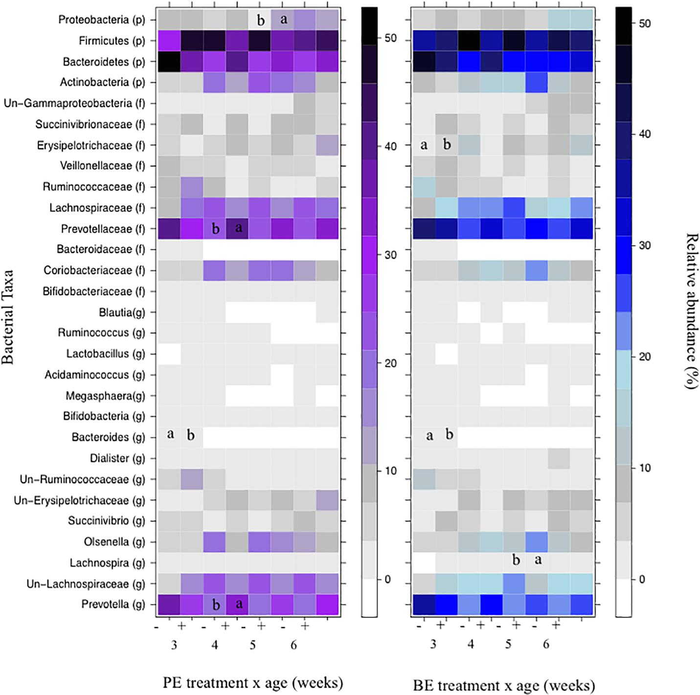 Frontiers | Microbial Inoculum Composition and Pre-weaned Dairy Calf