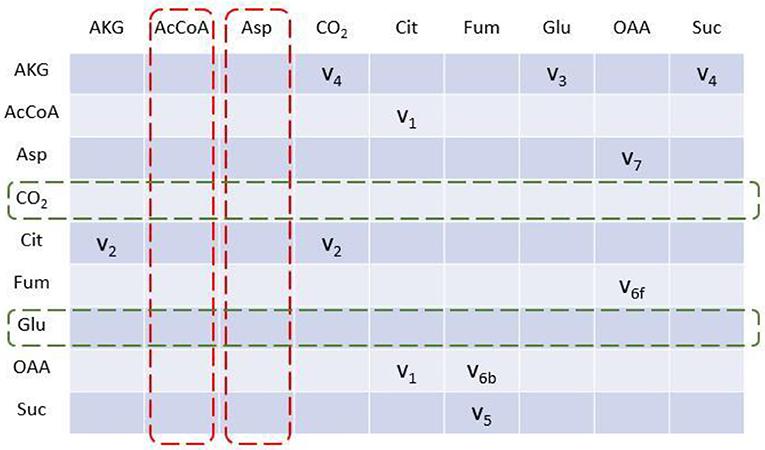 Frontiers | EMUlator: An Elementary Metabolite Unit (EMU) Based