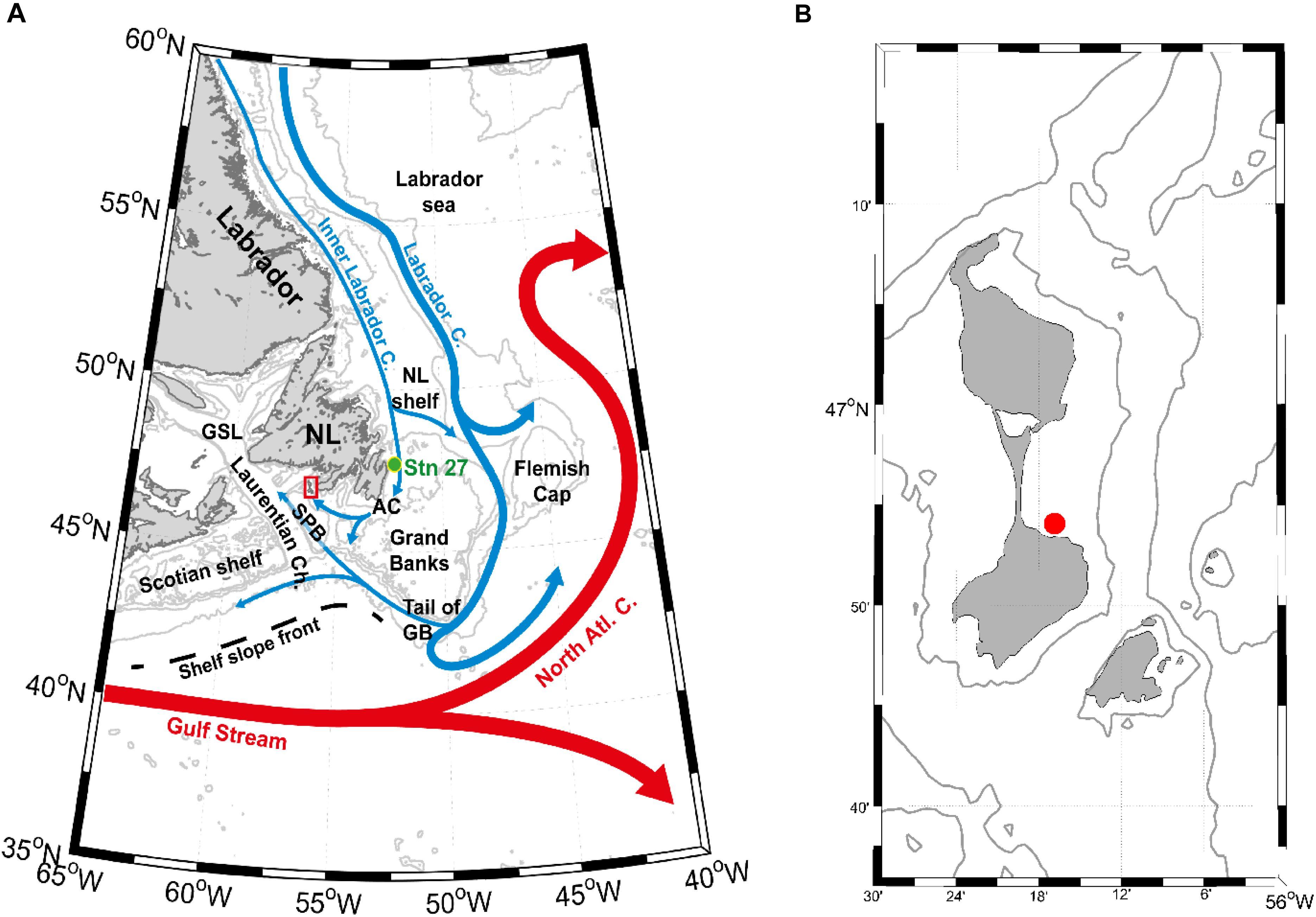 Frontiers | Growth Response of Arctica Islandica to North