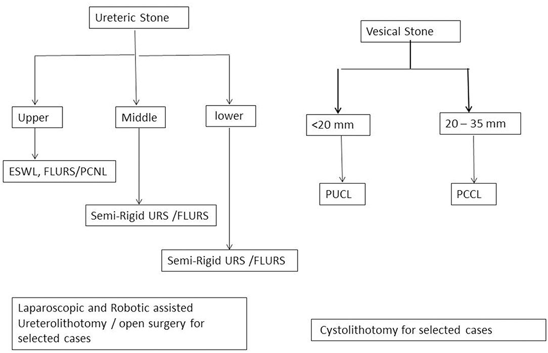 Frontiers | Update on Surgical Management of Pediatric Urolithiasis