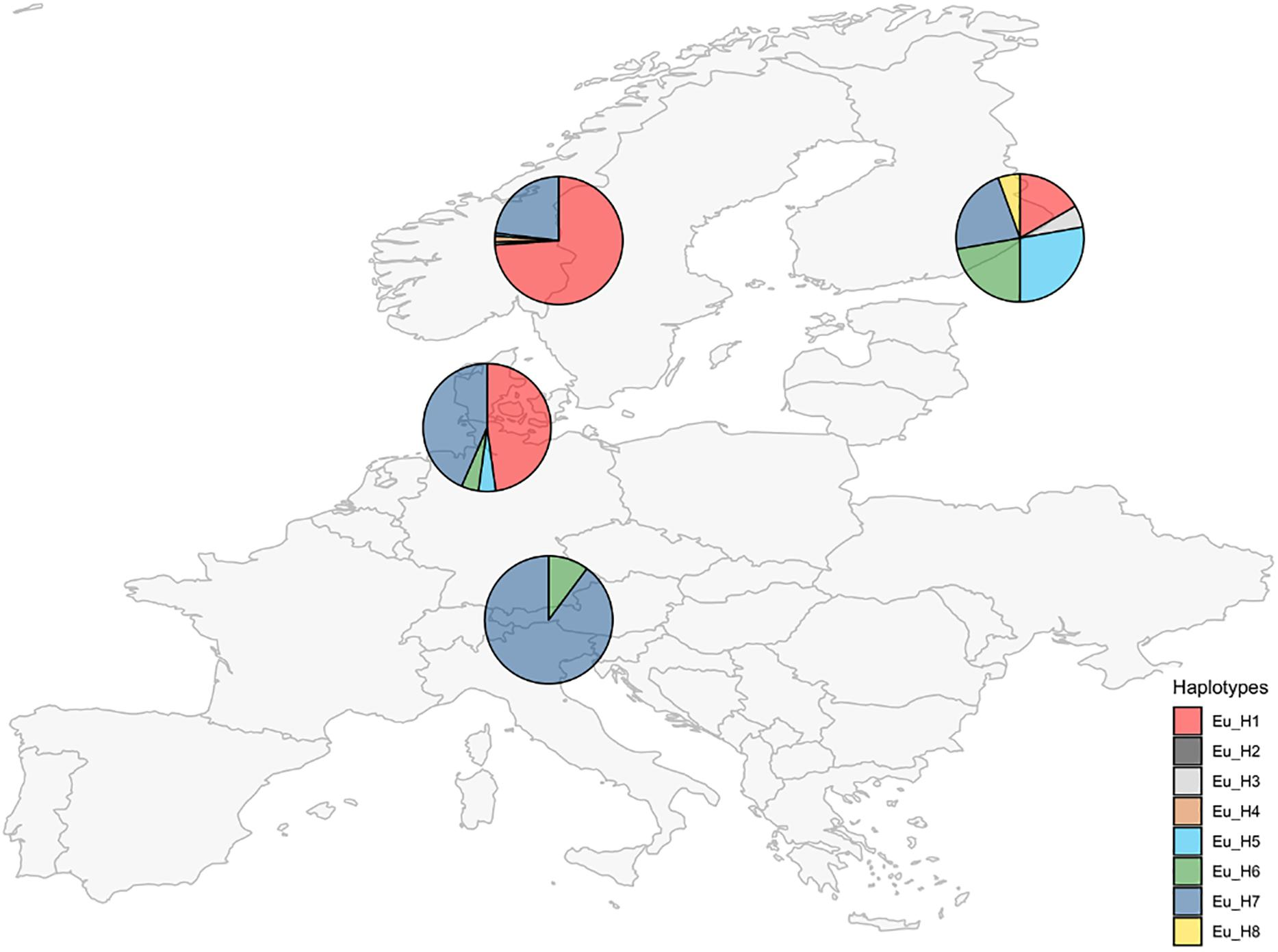 Frontiers | Large Scale Screening of Epichloë Endophytes Infecting on