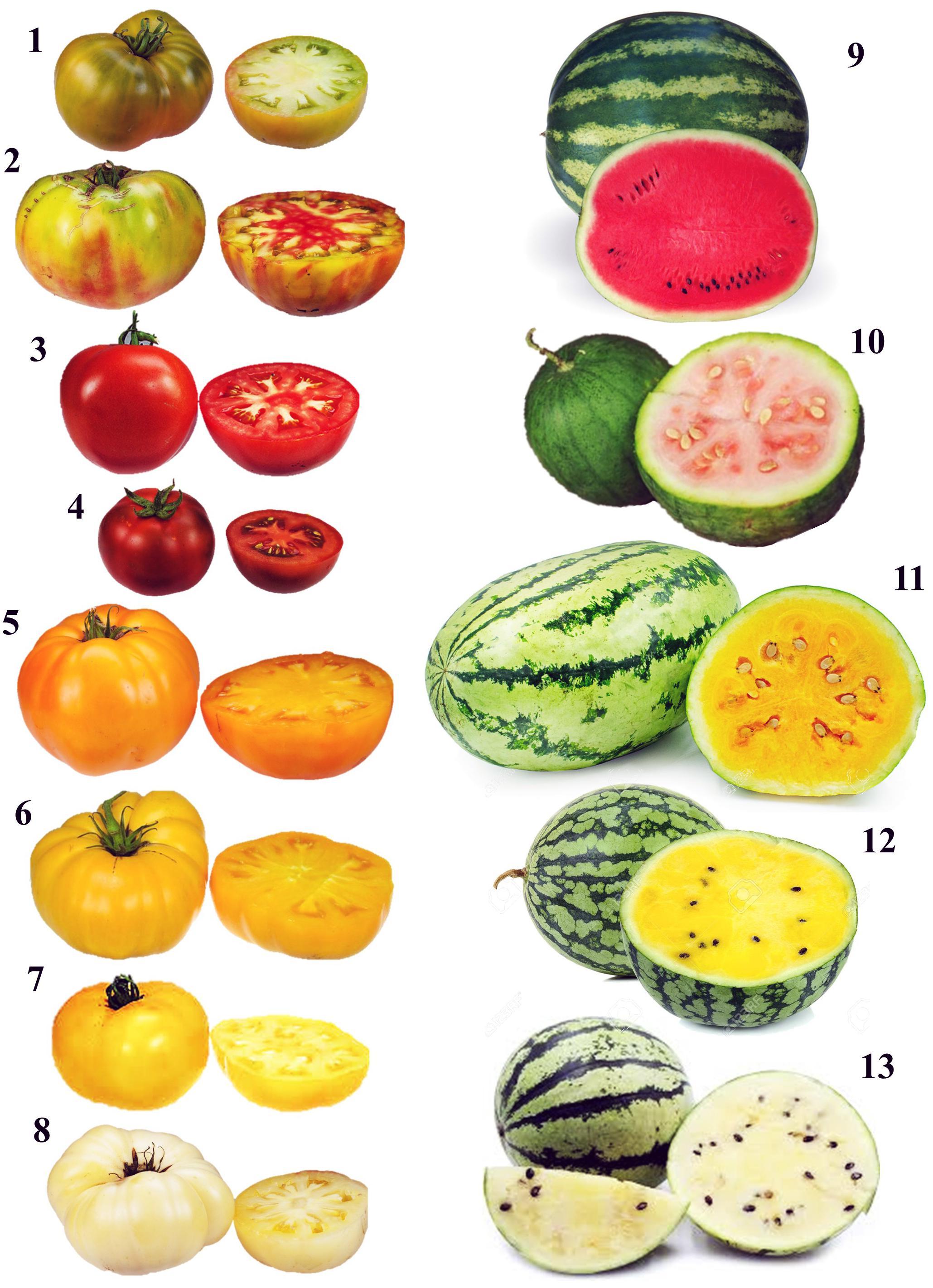 1//12th Scale Dolls House Food bol de fruits F1.13