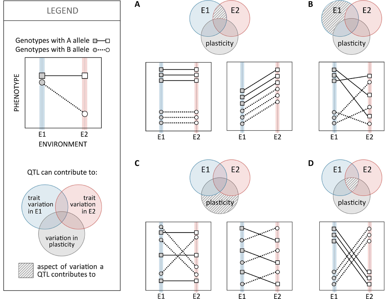 Frontiers | Genomics of Developmental Plasticity in Animals