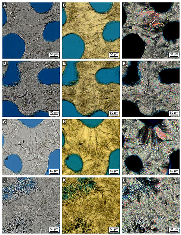 Frontiers | Correction Factors for δ18O-Derived Global Sea