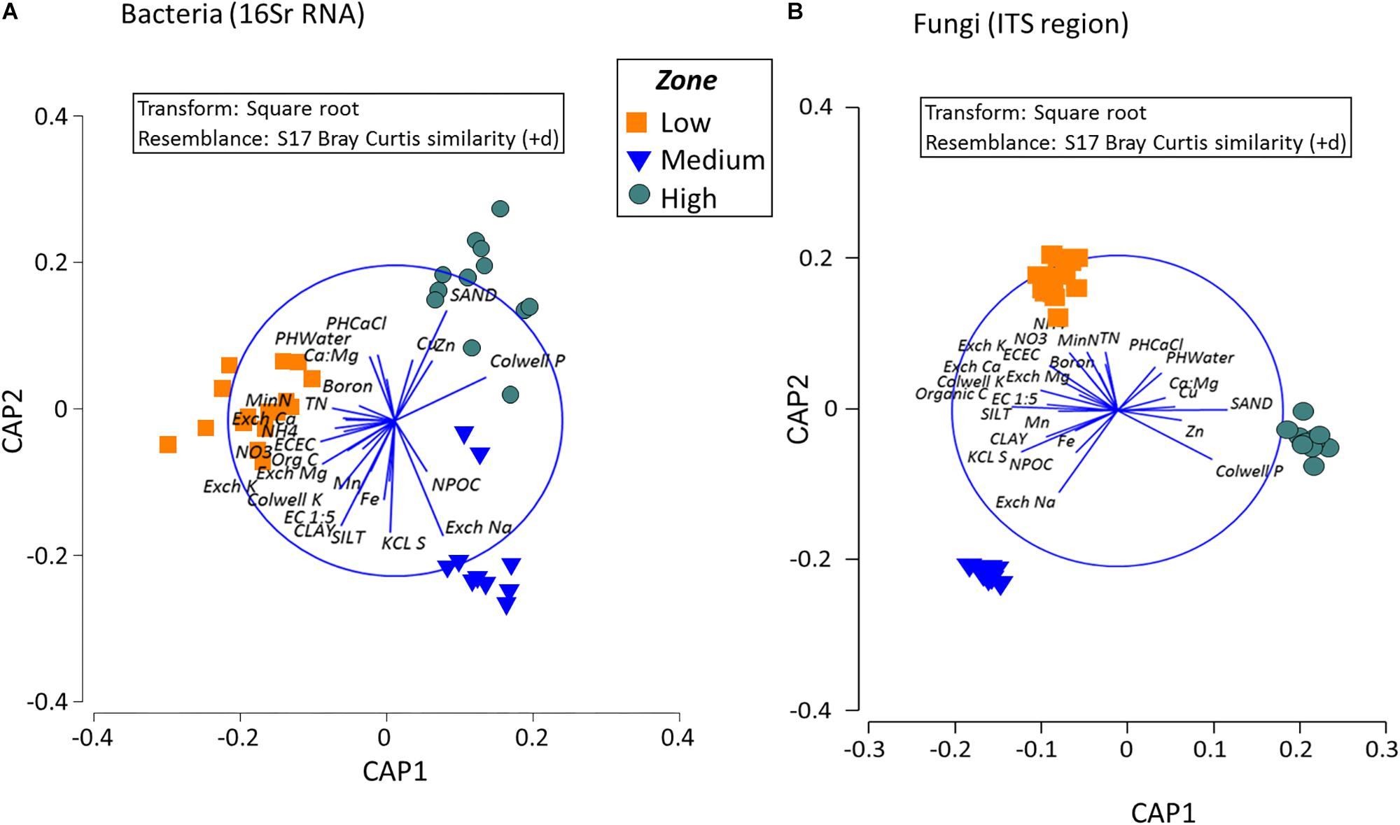Frontiers | Vineyard Soil Microbiome Composition Related to