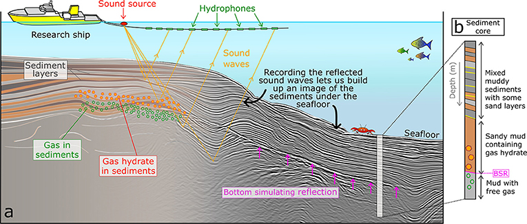 Figure 3 - (a) A research ship acquiring seismic data using a sound source and hydrophones towed behind the ship.