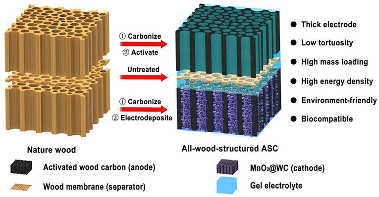 Frontiers | Biomass-Derived Porous Carbon Materials for