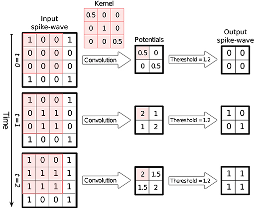 Frontiers | SpykeTorch: Efficient Simulation of Convolutional