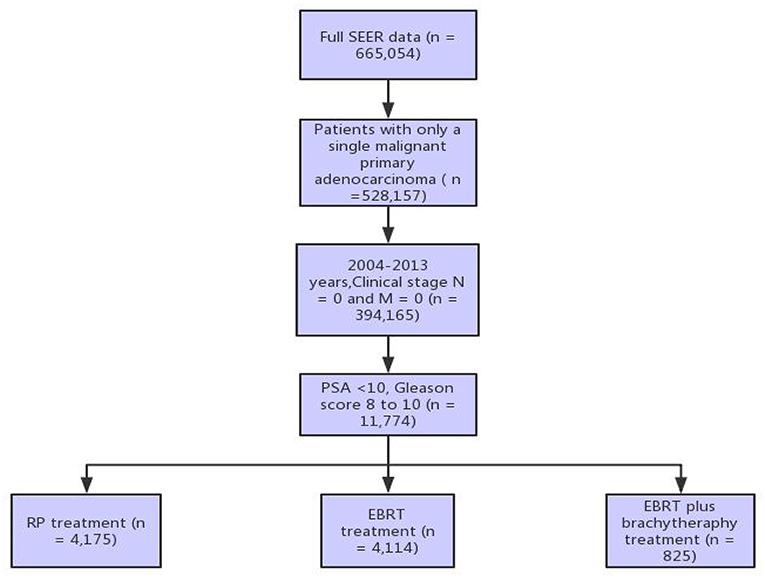adenocarcinoma prostate gleason score 33 6 treatment)