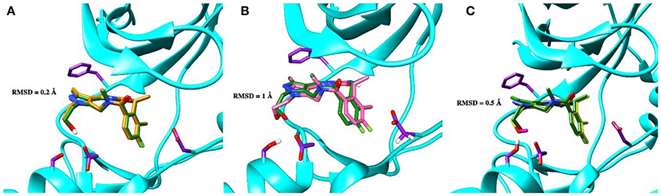 Frontiers Rational Drug Design Of Axl Tyrosine Kinase Type I Inhibitors As Promising Candidates Against Cancer Chemistry