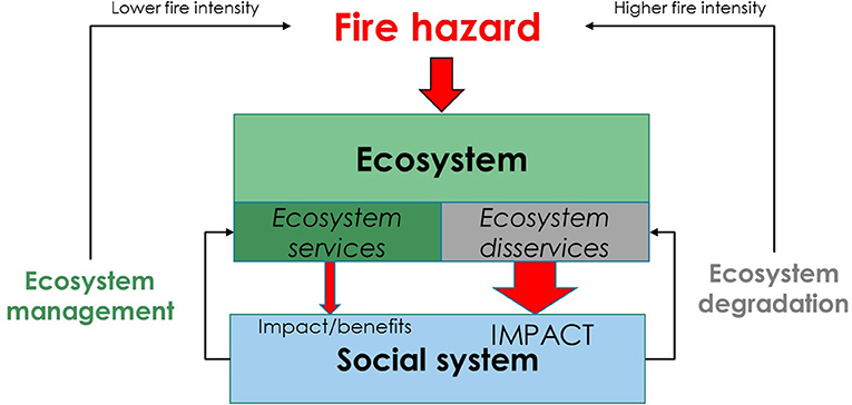 Frontiers | Fire-Regulating Services and Disservices With an