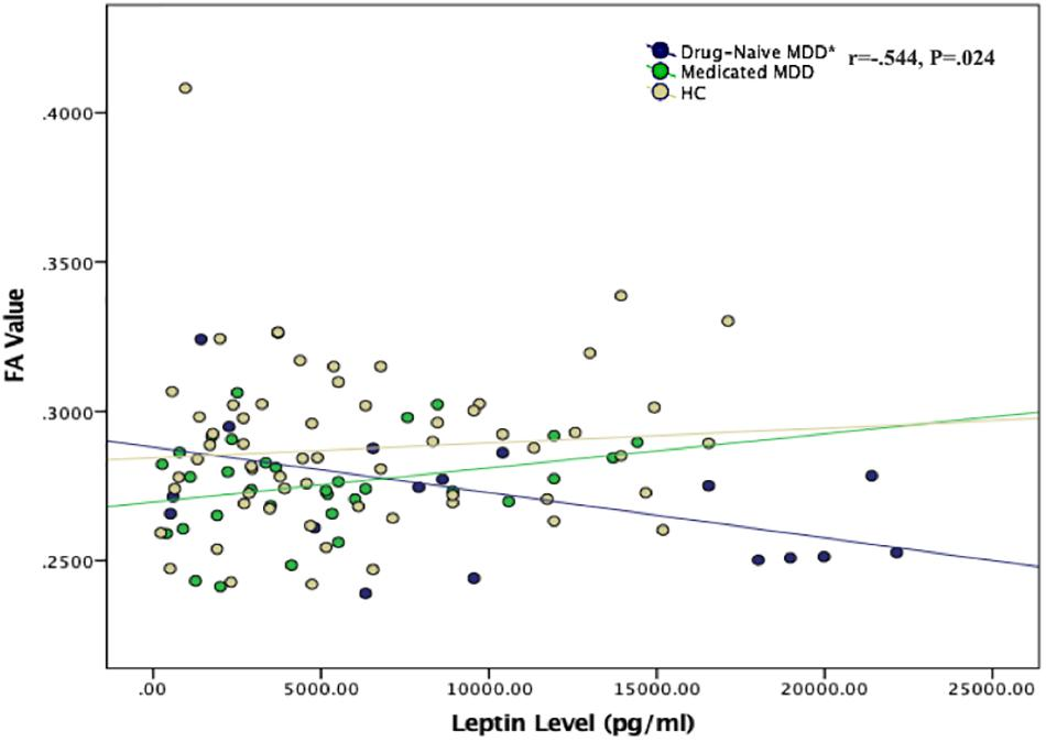 Frontiers | Relationship Between White Matter Integrity and
