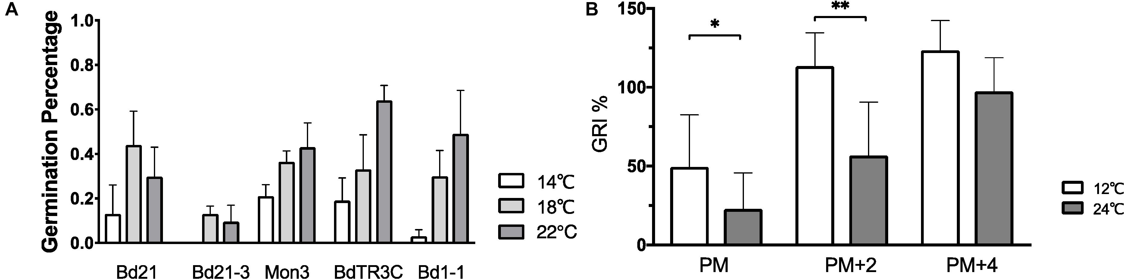 Frontiers The Effect Of Ambient Temperature On Brachypodium Distachyon Development Plant Science