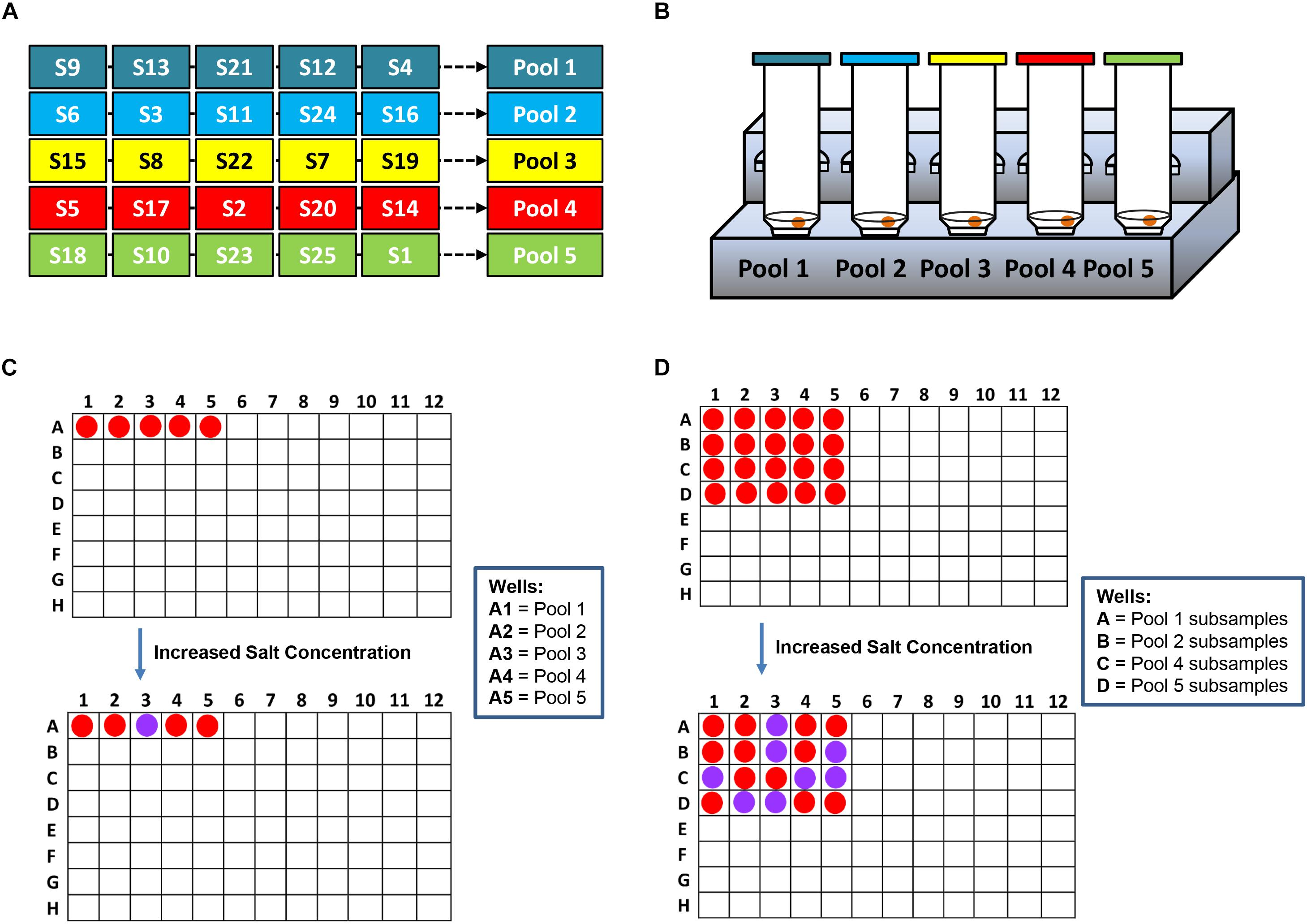 Frontiers | Simultaneous Colorimetric Detection of a Variety