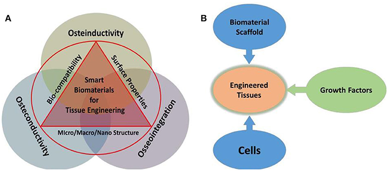 Frontiers | State-of-Art Functional Biomaterials for Tissue