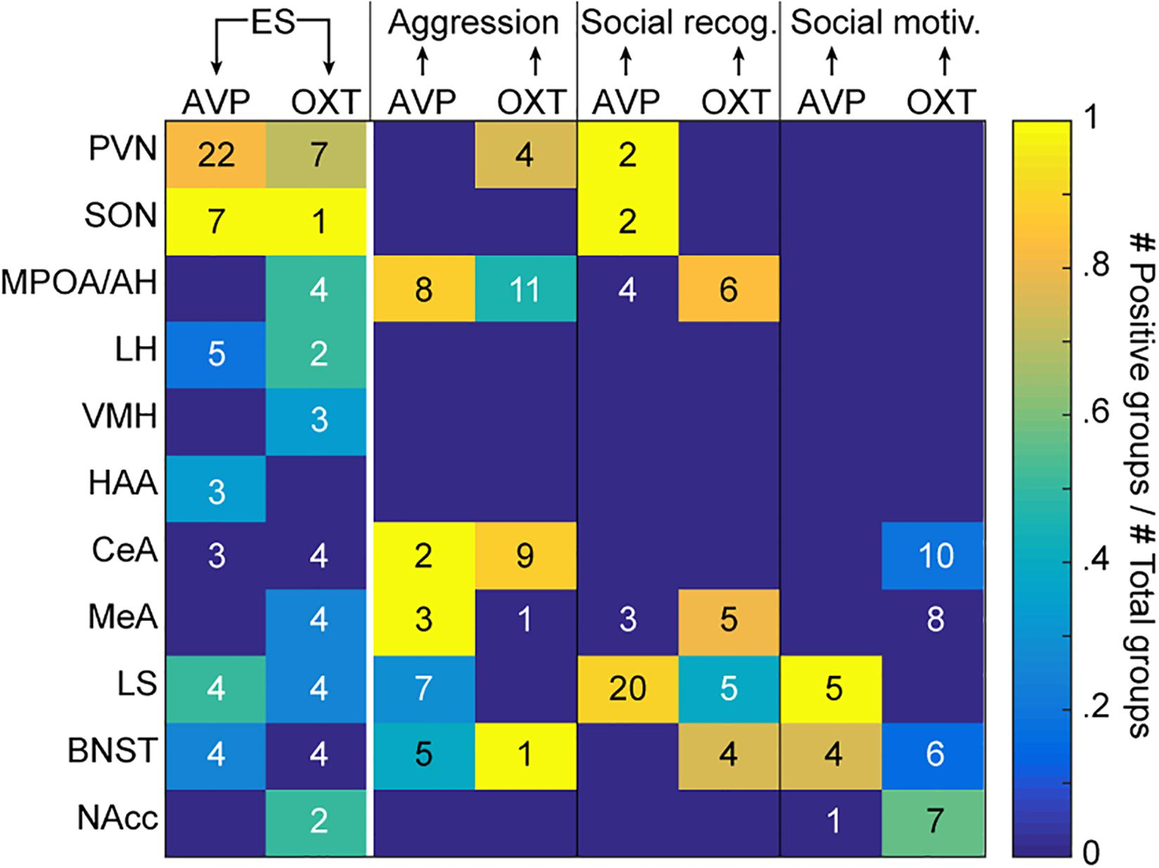 Frontiers | Early Life Adversity and Adult Social Behavior: Focus on