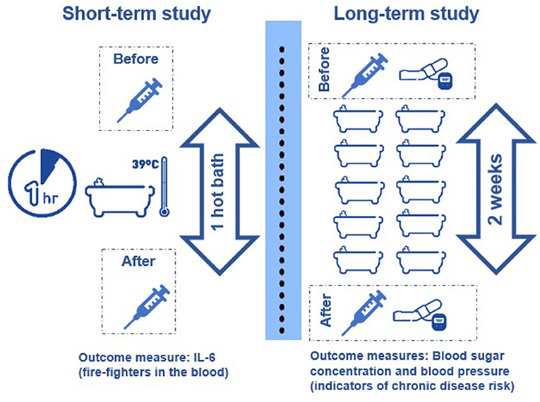 Figure 1 - Study to test the short- and long-term effects of hot baths on health.