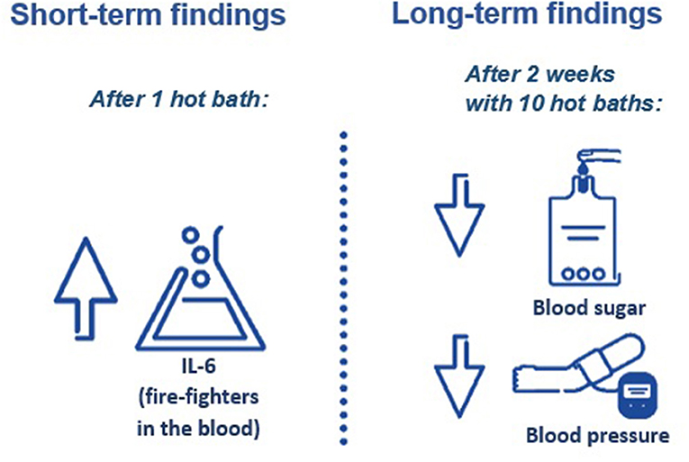 Figure 2 - Findings from the short- and long-term parts of the study.