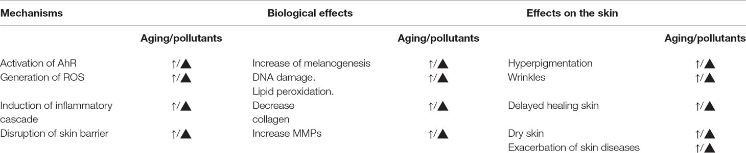 Frontiers | Environmental Stressors on Skin Aging