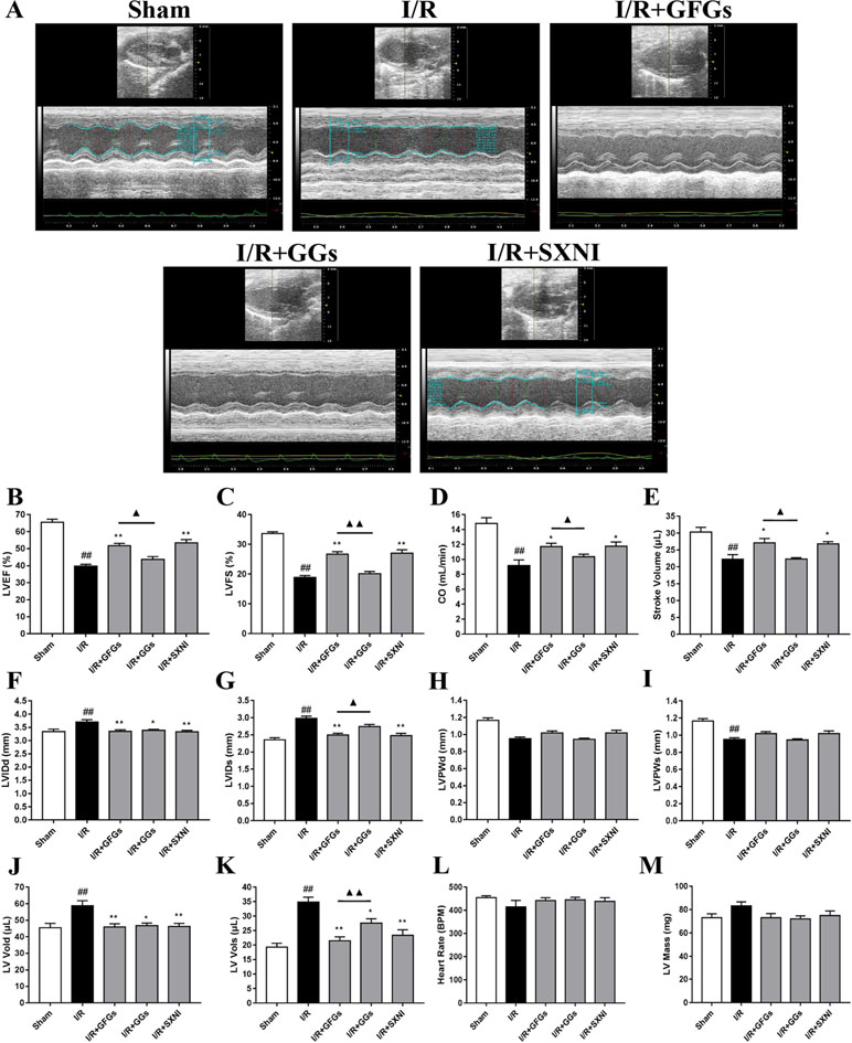 Frontiers | Ginkgo Flavonol Glycosides or Ginkgolides Tend to