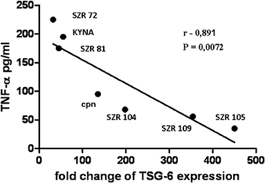Frontiers The Opposite Effects Of Kynurenic Acid And Different