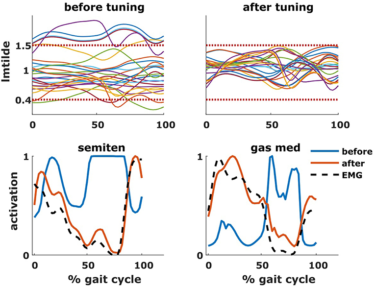 Frontiers   SimCP: A Simulation Platform to Predict Gait Performance