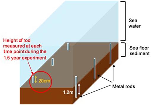Figure 2 - SECP methods for measuring sediment.