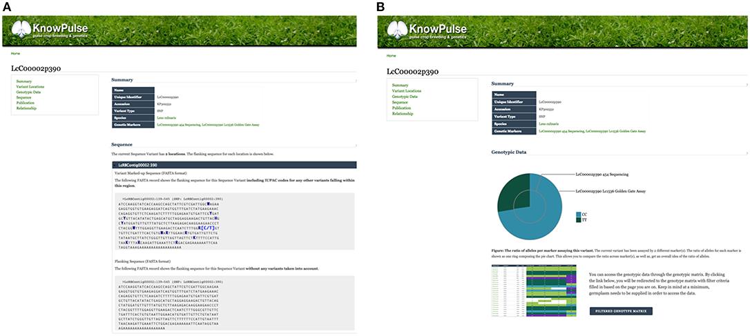 Stalker Portal License Key