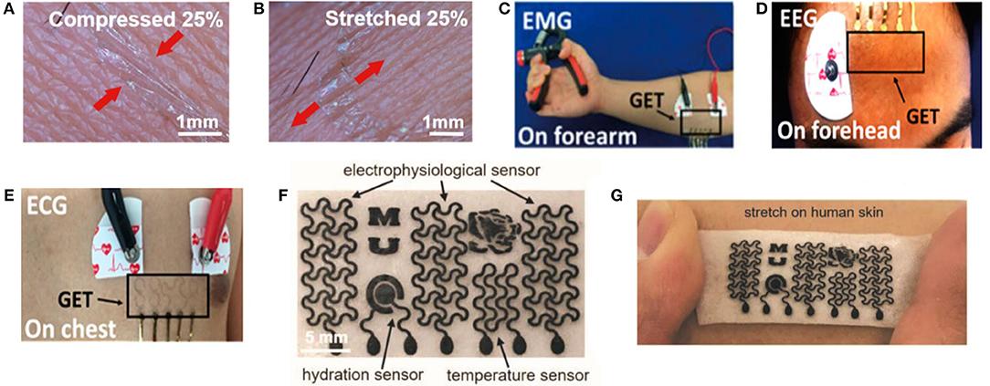 Frontiers   Graphene Based Sensors for