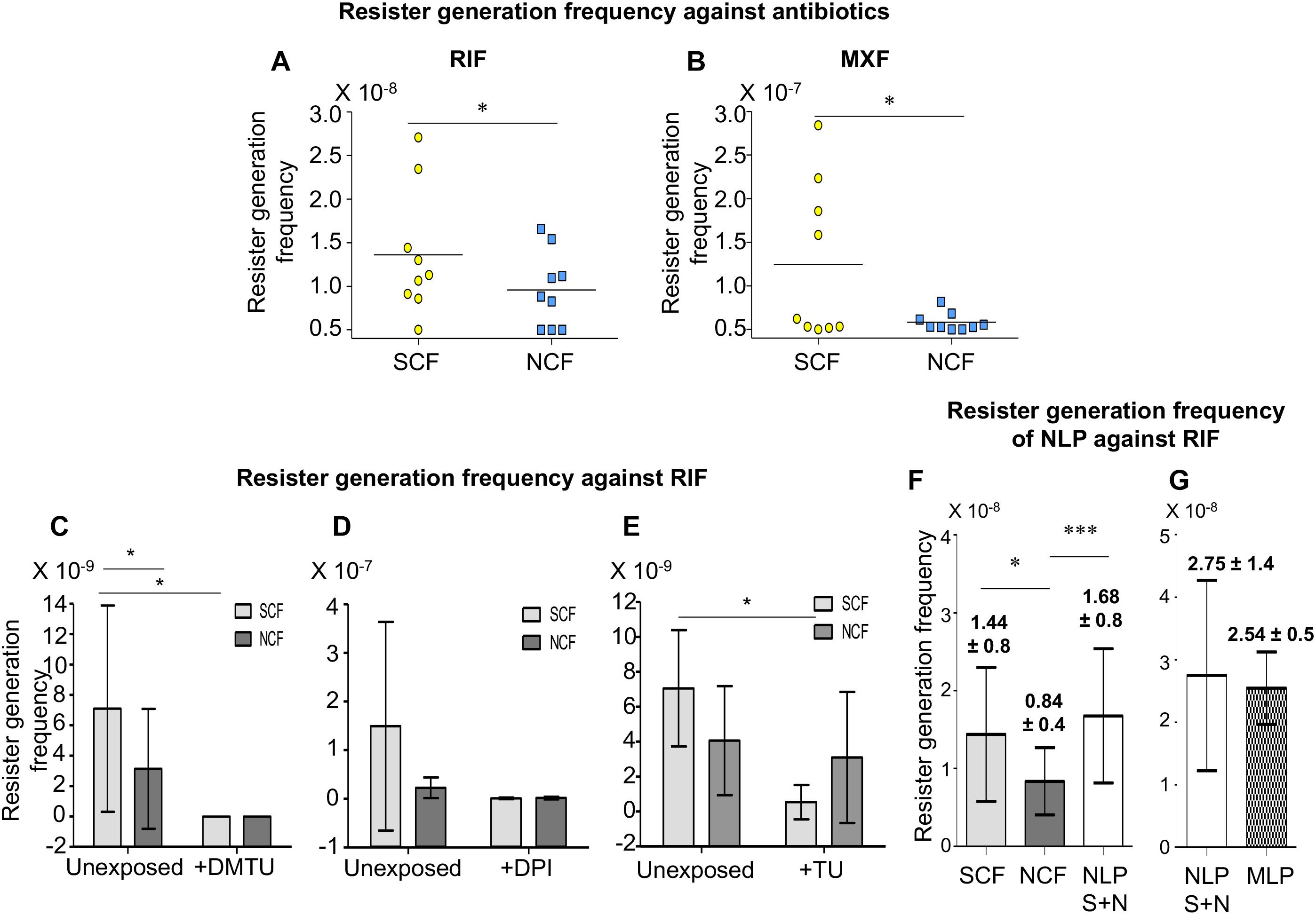 Frontiers | A Minor Subpopulation of Mycobacteria Inherently