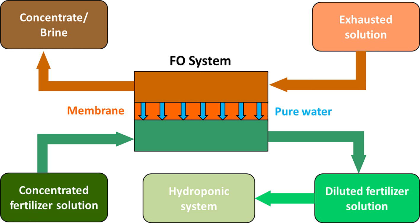 Frontiers | Hydroponic Solutions for Soilless Production Systems