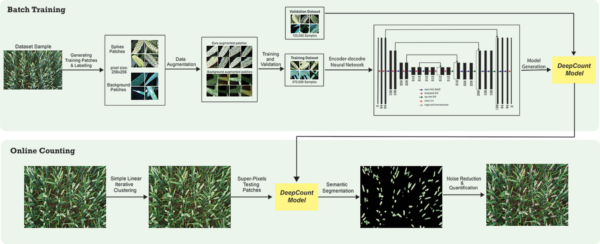 Frontiers | DeepCount: In-Field Automatic Quantification of