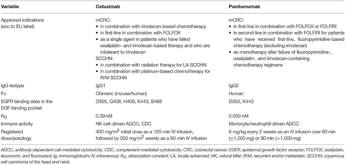 Frontiers Distinguishing Features Of Cetuximab And Panitumumab In Colorectal Cancer And Other Solid Tumors Oncology