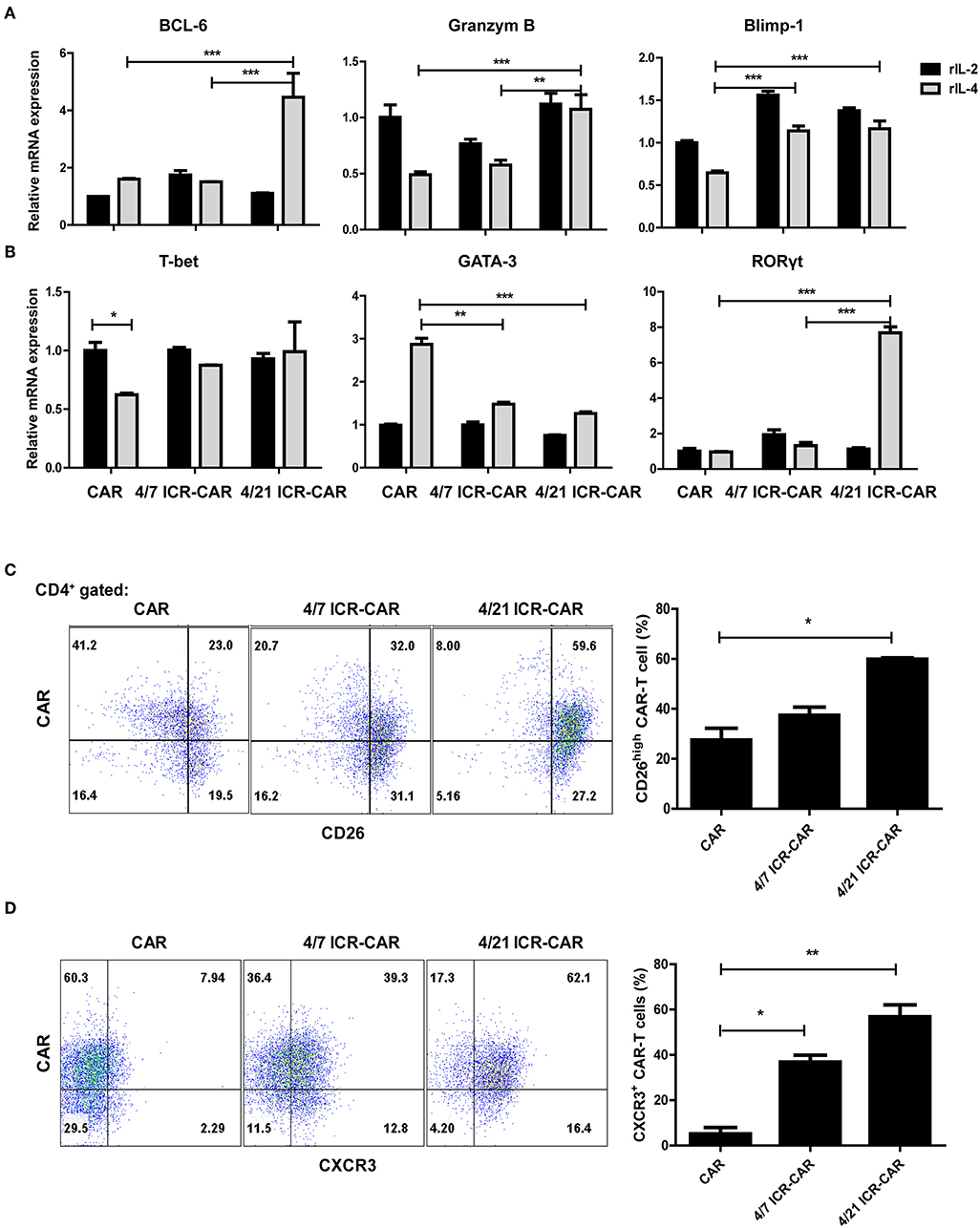 Frontiers | An IL-4/21 Inverted Cytokine Receptor Improving