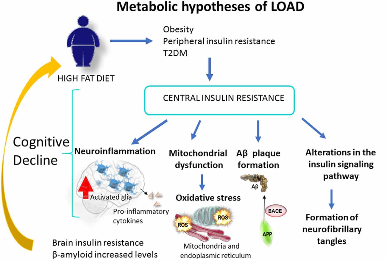 dieta para la diabetes singh et al 2020
