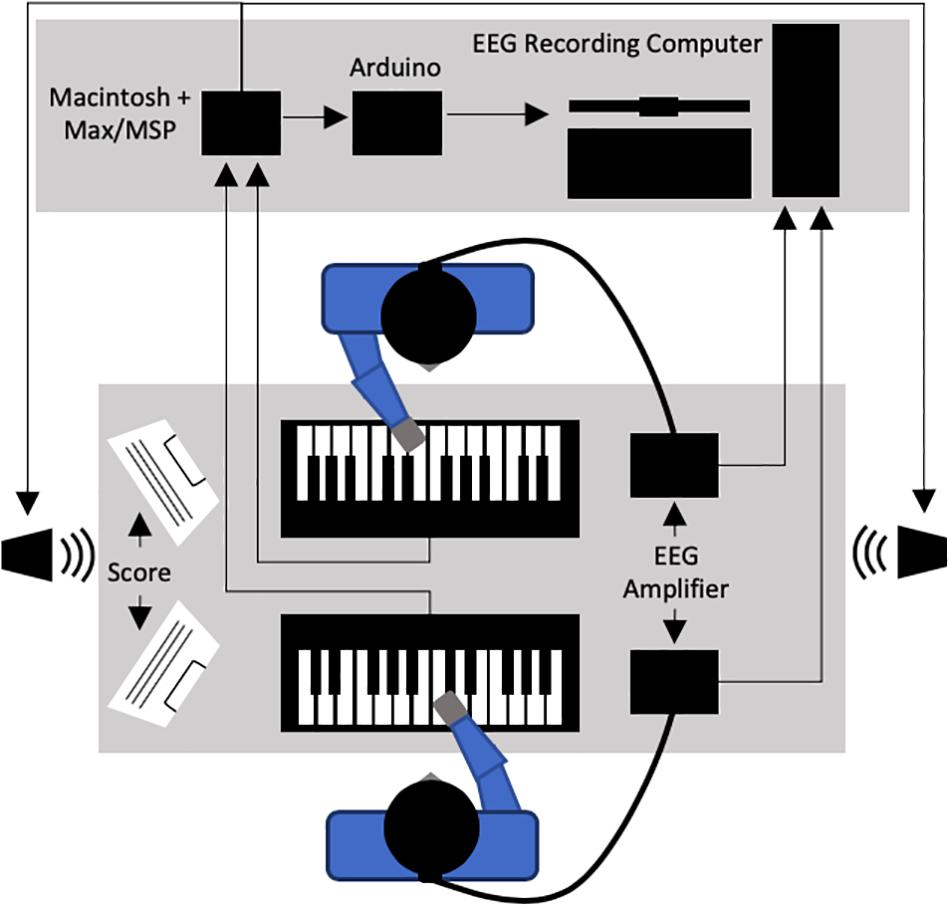Frontiers | Musical Role Asymmetries in Piano Duet