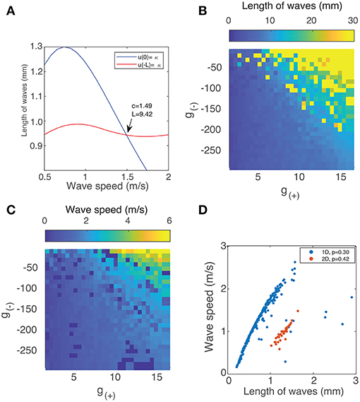 Frontiers | Complex Dynamics of Propagating Waves in a Two